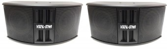 2 x Vocal-Star Passive Speakers 500w VS-PS250 image