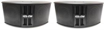 2 x Vocal-Star Passive Speakers 500w VS-PS250 image